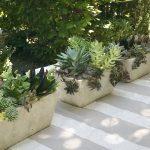 Small Rectangular Planters