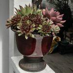 Red Pedestal Bowl